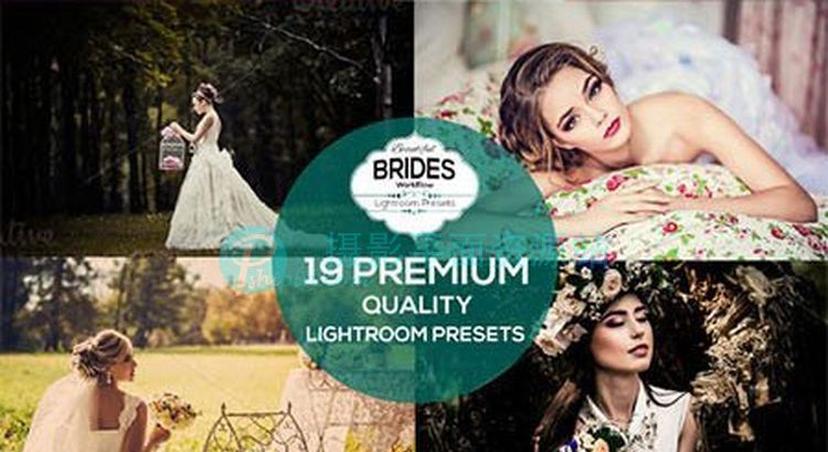 美丽的新娘婚纱Lightroom预设