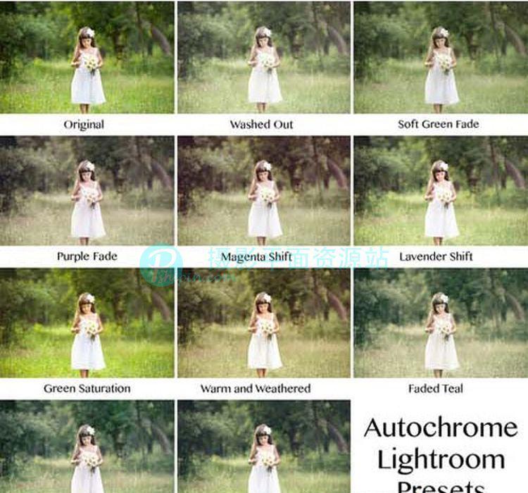 复古彩色底片Lightroom预设  Autochrome Lumiere Lightroom预设